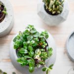 5 tolle DIY-Ideen mit Beton