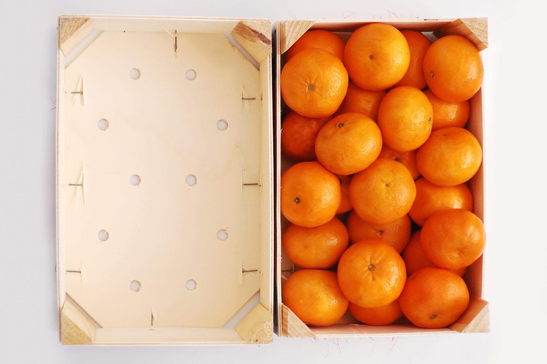 Mandarinenkisten Ideen