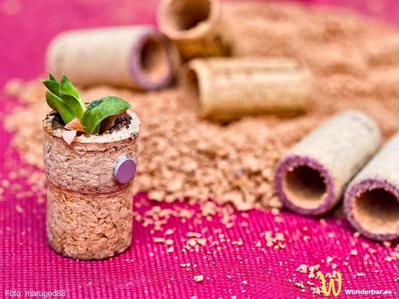 Korken ergeben süße kleine Töpfchen für Sukkulenten