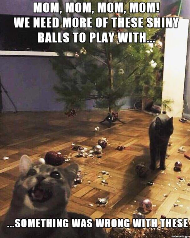 Katzen und Weihnachtskugeln